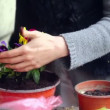 Super 35mm camera - planting flowers on a balcony — Stock Video