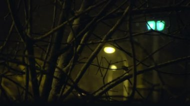 Sony FS-100 - snowing in the city at night. — Stock Video