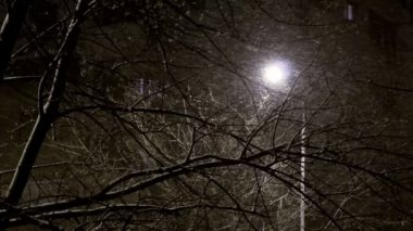 Sony FS-100 - snowing in the city at night. Black's aren't crushed — Stock Video