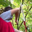 Stock Video: Young mshooting with bow and arrows (logos removed)