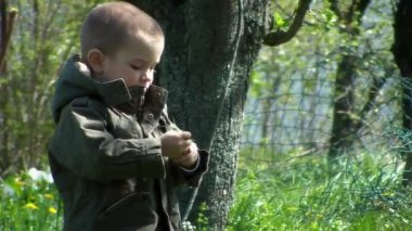 Young boy playing with grass in the backyard — Stock Video