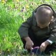 Stock Video: Young boy playing with grass in backyard.
