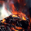 Preparation of barbecue fire — Stok video