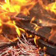 Stock Video: Preparation of barbecue fire