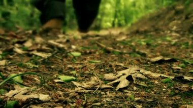 Man walking through the woods close-up — Stock Video