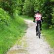 Постер, плакат: Cyclist in the woods