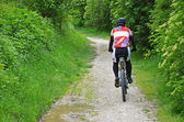 Cyclist on a wet forest road — Stock Photo