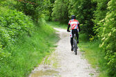 Cyclist in the woods — Stockfoto
