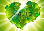 Heart-leaves — Stock Vector