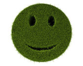 Grass Smiley — Stock Photo