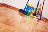 Limpieza de la casa — Foto de Stock