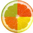Citrus slice - Stock Photo