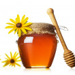 Honey with wood stick — Stock Photo #28331321