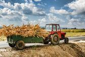 Autumn field works — Stock Photo