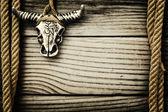 Crânio de búfalo em fundo de madeira — Fotografia Stock