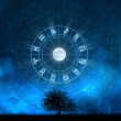 Zodiac Signs - Tree of Life - 图库照片