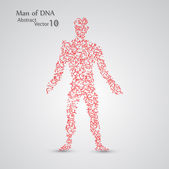 Molecular structure in the form of man — Wektor stockowy