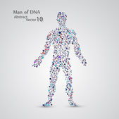 Molecular structure in the form of man — Stock Vector