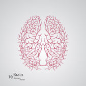 Creative concept of the human brain — Stock Vector