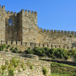 Trujillo Castle (Extremadura, Spain) — Stock Photo #20205971