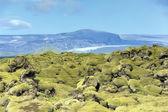 Lava field at Eldhraun — Stock Photo
