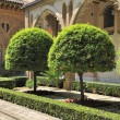 The yard of the Aljaferia palace (Zaragoza) with orange trees — Stock Photo