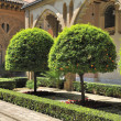 Stock Photo: Yard of Aljaferipalace (Zaragoza) with orange trees