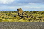 Road crossing a lava field overgrown with mosses — Stock Photo