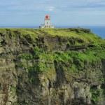 Lighthouse on the south coast of Iceland — Stock Photo #20995389
