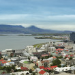 Reykjavik seen from Hallgrimskirkja — Stock Photo #21130523