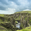 Canyon Fjadrargljufur, Iceland — Stock Photo #21274585