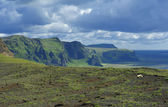 View of south coast at Dyrholaey, Iceland — Stockfoto