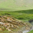 Hot springs in Hveragerdi, Iceland — Stock Photo #21446575