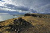 Vista della costa sud di dyrholaey, islanda — Foto Stock