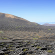 La Geria Valley, Lanzarote Island, Canary Islands, Spain — Stock Photo