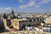 Seville from Espacio Metropol Parasol, square La Encarnacion — Stock Photo