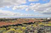 Landscape of Lanzarote Island — Stock Photo