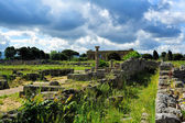 Roman ruins, Paestum — Stock Photo