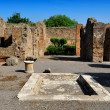 House of Tragic Poet, Pompeii — Stock Photo #35739879