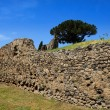 Old stone wall, Pompeii — Stock Photo #38662297