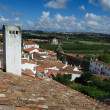 Rooftops of the houses within castle walls, Obidos, Portugal — Stock Photo #48543523