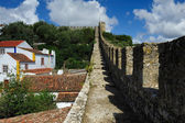 On old castle wall, Obidos, Portugal — Stock Photo