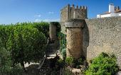 Oude muren, obidos, portugal — Stockfoto