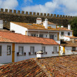Rooftops of the houses in Obidos, Portugal — Stock Photo #50567109