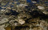 Kıyı şeridi, cascais, portekiz — Stok fotoğraf