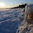 Sandy beached engulfed in ice — Stock Photo #39100139