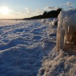 Stock Photo: Sandy beached engulfed in ice