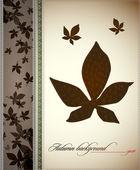 Autumn Vintage Decoration — Stock Vector