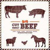 Guia de diagrama vintage para cortar carne — Vetorial Stock