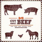 肉を切るのためのビンテージ図ガイド — ストックベクタ